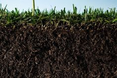 {the world is losing soil fertility and why}