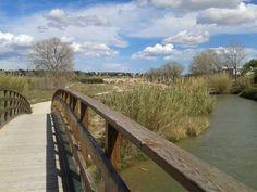 Los puentes del Turia: la pasarela 14 en primer plano y el Puente Viejo al fondo.