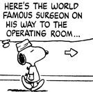 The World Famous Surgeon is one of Snoopy's fantasy alter egos. 1982, Snoopy dons a surgical cap and gown, and wanders hospital hallways as the World Famous Surgeon.  The last appearance of the World Famous Surgeon is in the strip from August 27, 1999, in which he diagnoses Rerun van Pelt with a bruised knee.