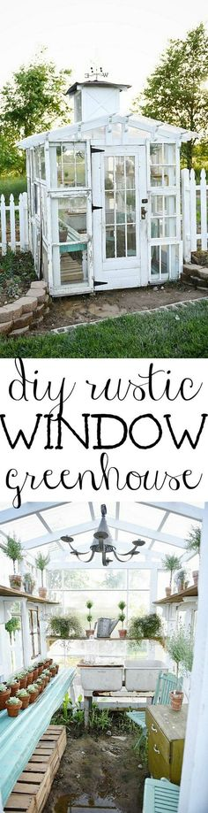 DIY Window Greenhouse DIY rustic window greenhouse Take the full tour of this hand built greenhouse made out of antique windows inside & out! The post DIY Window Greenhouse appeared first on Garden Easy. Antique Windows, Old Windows, Rustic Windows, Recycled Windows, Vintage Windows, Building A Chicken Coop, Greenhouse Gardening, Greenhouse Ideas, Aquaponics