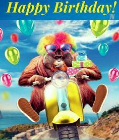 uno scimmione su una vespa - Immagini di buon compleanno, le più simpatiche da scaricare gratis Happy Birthday Man, Happy Brithday, Birthday Songs, Birthday Love, Happy Birthday Greetings, Happy Birthday Banners, Birthday Quotes, Birthday Cards, Holiday Pictures