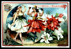 1898. Flower Girls (Lily & Cactus) trading card issued by Liebig Extract of Beef Company. S556.