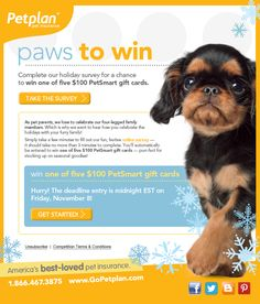 Complete our holiday survey by Nov. 8 for a chance to win one of five $100 PetSmart gift cards!