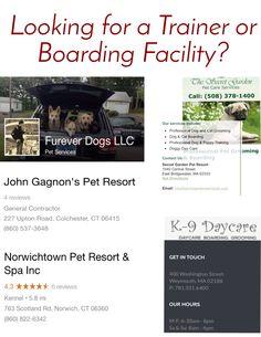 CT & MA trainers/boarding facilities