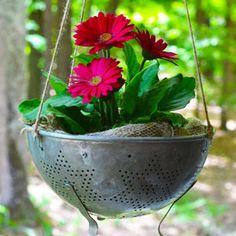7 of the Most Popular Garden Club Trends from Pinterest | Garden Club