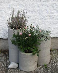 pic only - site requires log-in, password etc Cement Planters, Concrete Pots, Concrete Projects, Concrete Design, Ferns Garden, Garden Pots, Container Plants, Container Gardening, Concrete Furniture