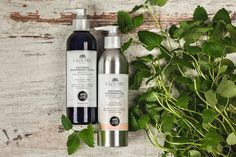 Cleansing – make it part of your daily skincare regime. Soothing Antioxidant Toner & Soothing Cleansing Oil