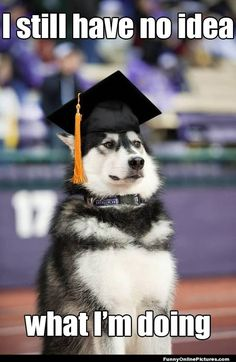 But it was all worth it because you knew that once you graduated you were prepared for anything! | Community Post: 26 Signs You Were A Business Major
