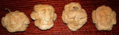 shrunken house elf heads made from apples