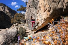 www.boulderingonline.pl Rock climbing and bouldering pictures and news dirtlegends: @waywar