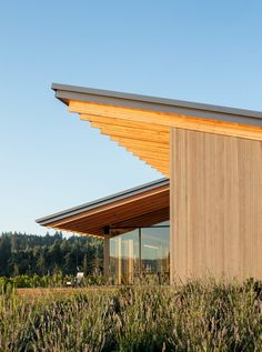 L'Angolo Estate's wine tasting room by Lever Architecture features sloped roofs with deep overhangs, and walls made of cedar and glass.