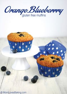 Grain-free and Paleo, these muffins are moist, delicious and sweetened with honey. #glutenfree #paleo