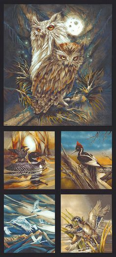 "North American Wildlife 5 - Moonlit Birds - 24"" x 44"" PANEL - Quilt Fabrics from www.eQuilter.com"