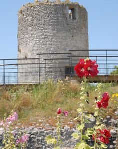 moulin du Fâ   à  Barzan