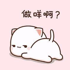 Cute Cartoon Pictures, Cute Love Pictures, Anime Girlxgirl, Kawaii Anime, Chibi Cat, Cat Couple, Cute Memes, Cute Comics, Cute Gif