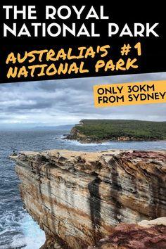 What to do in the Royal National Park - Sydney Australia Travel Guide, Visit Australia, Royal National Park Sydney, National Parks, Cool Places To Visit, Places To Go, Travel Guides, Travel Tips, Travel Plan