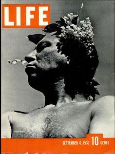 Life Cover - Harpo Marx