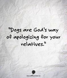 "LOL dog owner humor ""Dogs are God's way of apologizing for your relatives. Great Quotes, Funny Quotes, Life Quotes, Inspirational Quotes, Crazy Quotes, Badass Quotes, Quotes Quotes, Yorkies, Pekingese"