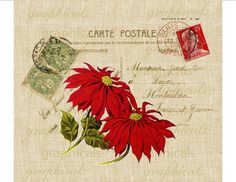 Red poinsettias on Paris Carte Postale Christmas red and green digital download graphic image.    10% OFF $10 or more. Choose any image, any price,