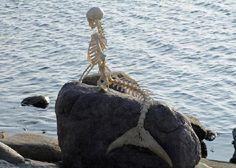 The Copenhagen Mermaid (2010)