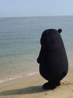 Kumamon thinking about the life choices it made. I'm really feeling it, to be honest Ukiss Kpop, Grunge Style, Chibi, Mood Pics, Meme Faces, Cute Characters, Reaction Pictures, Dankest Memes, Anime
