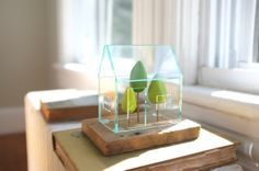 Miniature greenhouse structure - small acrylics architecture around green trees - glass house -look solarium