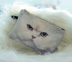 Hey, I found this really awesome Etsy listing at https://www.etsy.com/listing/170347780/white-persian-white-cat-pouch-white-cat
