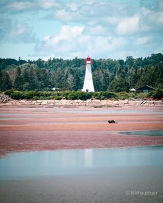 Prince Edward Island, Growing Up, This Is Us, Memories, World, Travel, Instagram, The World, Trips