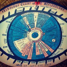 Iridology Chart of Eye Reflexology