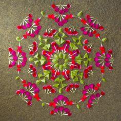 Partecipa al laboratorio il 14 Febbraio a Roma Eur qui i dettagli http://www.counselingstyle.it/2015/02/coloriamo-il-colore-alleato-per-il.html  Danmala - Flower mandala