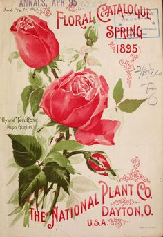 Floral catalogue : spring 1895
