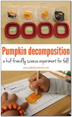 fall science: Pumpkin decomposition experiment Pumpkin decomposition experiment: a fall science activity for kids in preschool, kindergarten, and elementary school. Grab a copy of the FREE Pumpkin Decomposition journal to do this activity with your kids! Autumn Activities For Kids, Fall Preschool, Preschool Science, Science Experiments Kids, Science Lessons, Science For Kids, Preschool Kindergarten, Teaching Science, Montessori Science