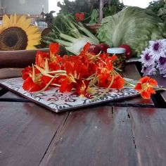 Está oficialmente declarada a revolução do amor! Vem comigo que na escada eu te conto. #amigos #familia #belohorizonte #sustentabilidade #orgânicos #artes #moda #gastronomia #musica #arquitetura #doula #mae #coracao by carlaribeiroresto http://ift.tt/1XErA4d
