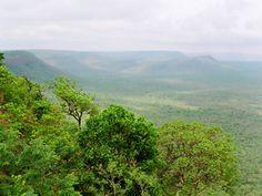 Krishna Wildlife Sanctuary - in Vijayawada, Andhra Pradesh, India