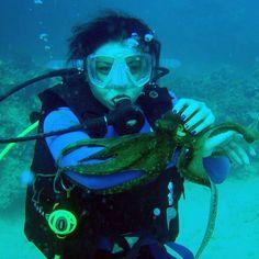 #scuba #hawaii #honolulu diving http://ift.tt/1Pfghc2