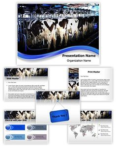 Cow Milking Factory Powerpoint Template is one of the best PowerPoint templates by EditableTemplates.com. #EditableTemplates #PowerPoint #Industrial #Bovine #Cow #Agriculture #Production #Teat #Animal #Rural #Tube #Farming #Suction #Commercial #Automatic #Mammal #Machine #Storage #Process #Holstein #Work #Farm #Meat #Pressure #Cheese #Equipment #Pipe #Connect #Water #Metal #Cow Milking Factory #System #Milk #Cattle