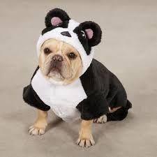 Ik ben een panda! ;-)