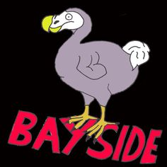 Loving this new Bayside logo that I designed for them