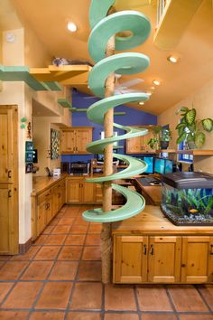 Cat Walkway by Peter Cohen, houzz #Cat #Walkway #Spiral