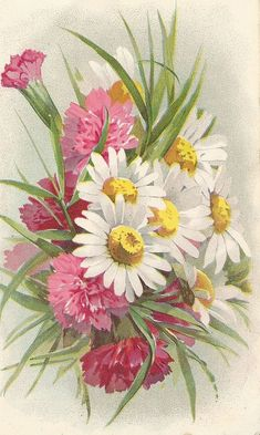 Floral Graphic from an old Victorian book