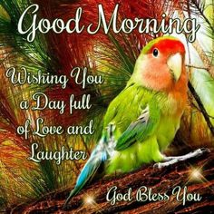 Good Morning Day Night Quotes Pics And Videos. Good Morning Day Night Quotes Pics And Videos Day And Night Quotes, Good Morning God Quotes, Morning Thoughts, Morning Greetings Quotes, Good Morning Christmas, Good Morning Happy Monday, Good Morning Friends, Good Night Blessings, Good Night Wishes