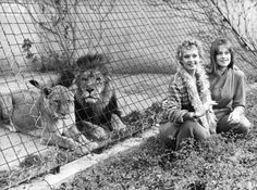 "Tippi Hedren with daughter, Melanie Griffiths at the Shambala Preserve: Where grossly mistreated big cats can ""... regain their physical and mental health then live out their lives in dignity."""