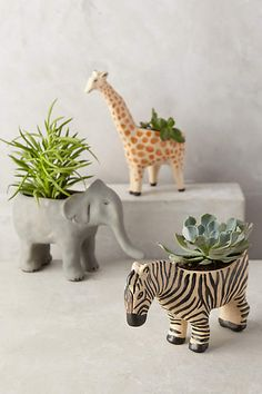 Wild Wanderer Planter - anthropologie.com DIY Replicate: Wooden figurines, drill holes, fill with soil and succulents.....
