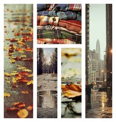 ☁♥It's autumn year-round♥☁
