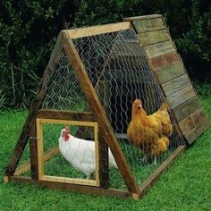 DIY Chicken Coops..this is cute, but is it too small? i guess that may depend on how many i want....