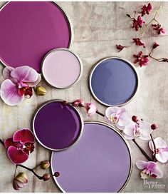 It's Pantone Color of the Year time! Each year Pantone comes out with their color forecast. Shades Of Purple, Magenta, Purple Hues, Purple Palette, Purple Walls, Purple Orchids, Deep Purple, Periwinkle, 50 Shades