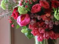 Pink parrot tulips play with coral peonies, viburnum, pink spray roses, English garden roses, coral ranunculus and astrantia.