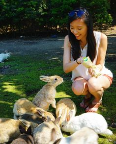 """Pin for Later: 49 Islands You Must Visit Before You Die Okunoshima (""""Rabbit Island""""), Japan Bunny Island, Rabbit Island, Cool Places To Visit, Places To Travel, Places To Go, Save Nature, Go To Japan, All In The Family, I Want To Travel"""