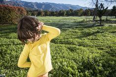 No quintal dos nossos amigos Mima e Roberto. Ojai, California #california #ca #usa #day #children #green #nature #sun #travel #photo #marcelocoelho  insta: @marcelocoelhofotografia  www.marcelocoelho.com
