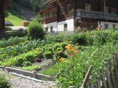 Sonniger Hang für diesen Bauerngarten/Südtirol